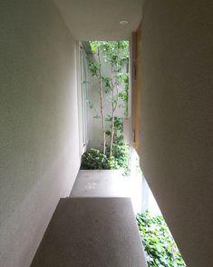 内露地の家4