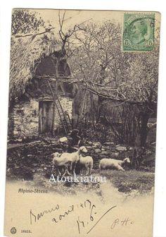 In country in Europe. Les moutons dans la campagne en Europe. Beautiful vintage postcard of Europa. Original, not print. Contact me for price. Différentes cartes postales en provenance de l'Europe et autres pays sur ce continent. Elles sont originales d'époque. Pas de réplique. Contactez nous pour le prix.