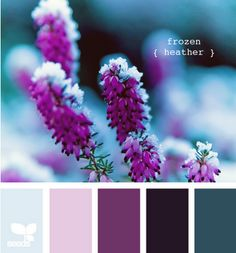 love this color scheme. the icy blue and purple are almost my wedding colors! I also adore the entire blog this came from. so much color inspiration!