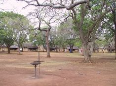 Campsites in the Kruger National Park. Camping with great amenities such as shops, restaurants, swimming pools, filling stations, bush walks & game drives.