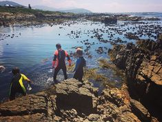 Snorkelling in Onrus Adventure Activities, Snorkelling, Holland, Cape, Southern, Africa, Ocean, River, Mountains