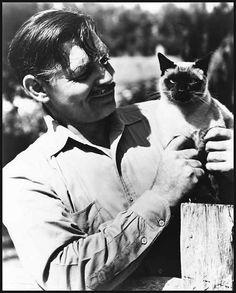 Clark's cat