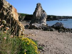 Porth Padrig or (White Lady Bay) is a Sand & rock beach located near Amlwch in Anglesey. Anglesey, Snowdonia, Places To Visit Uk, Wales Beach, Uk Beaches, Take Shelter, Beach Activities, Dog Beach, North Wales