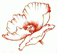 I want red poppy tattoo in memory of umy dad.searching for the perfect one. California Poppy Drawing, Watercolor Flowers, Watercolor Paintings, Red Poppy Tattoo, Poppies Tattoo, Red Poppies, Henna Designs, Art Techniques, Art Floral