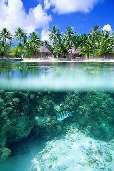 20 Amazing Photos of Beaches Around the World Part 1 - Tahiti Beach