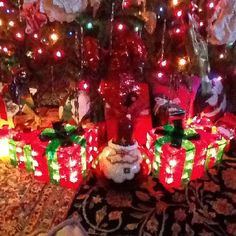 Lighted packages under the tree so it always looks happ!