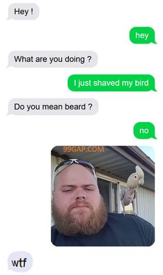 #Funny Text About Bird vs. Shaving