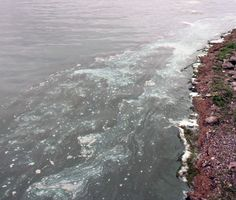 The summer of 2014 brought widespread blue green algae blooms to northern Lake Champlain, pictured here, and Lake Carmi in Franklin County. Supporters of cleaning Vermont's polluted waterways gathered in Montpelier Tuesday.