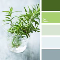 """Delicate shades of green cheer one up. This color scheme should be used in a bedroom or a kitchen - then the charge of a """"right"""" vigor is guaranteed for yo."""