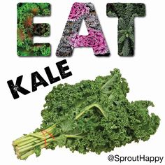 Eat more #kale! Leafy #greens are packed with calcium and antioxidants. Eat better feel better. #Vegan#kaleyeah #nutrition  #veganfood #veganism #vegetables #veganfoodshare #eatveg #vegansofig #plantbased  #earthling #eatyourvegetables #cleaneats #eatclean #healthy #fit #fitness #highcarbvegan #plantbaseddiet #carbthefuckup #rawtilfuckthat #tampavegan #whatvegansdo #veganlife #eathealthy #plantstrong #veganfoodporn #veganeats