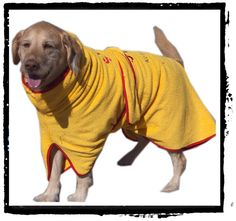 "For your four-legged First Mate, a terry ""robe"" to dry them off after a swim!"