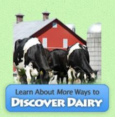More Ways to Discover Dairy  Lessons for upper elem and middle school