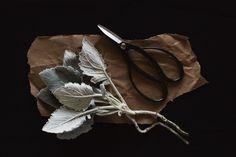 Ashley Sullivan Photographer - Food, Travel, Interiors, Still Life