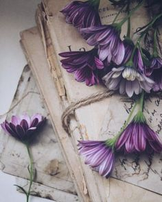 Flower Aesthetic, Book Aesthetic, Purple Aesthetic, Still Life Photography, Book Photography, Cute Backgrounds, Cute Wallpapers, Flower Wallpaper, Iphone Wallpaper