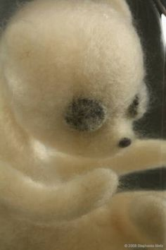 "Stephanie Metz, Ursulus parvulus 10-08 detail Felted wool, glass jar 7"" H x 3.5"" W x 3.5"" D 2008"