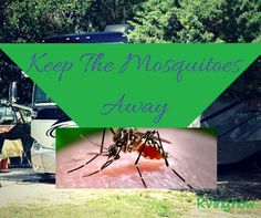 There are three major types of mosquitoes that every RVer should be aware of. Namely- Ades- floodwater mosquito, Anopheles- Freshwater mosquito and Culex- Backyard stagnant water mosquito. Depending on the area that you decide to camp in, the mosquito's in the vicinity can be dangerous to the extent of being fatal too! Make sure to