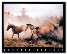 Your love for animals can now be seen on the walls of your house with this western cowboy mustang horse art print poster. This poster captures the image of running horses in all their glory is definitely make a classy addition in your room decor. Discover the uniqueness of this poster and Order today for its durable quality and excellent color accuracy.