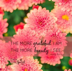 Gratitude transforms. #gratitude For the app of beautiful wallpapers ~ www.everydayspirit.net xo