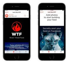 Cat photos are some of the most popular images on the web today, and encrypted messaging service Wickr is tapping into that, along with one of the classic..