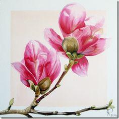 Spring Colours -magnolia-