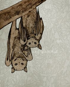 i love bats - these flying foxes on an art nouveau background make me smile.