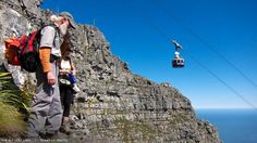 There is no easy hike up Table Mountain. But our hiking expert knows the best ways to get to the top. Table Mountain, Sea Creatures, Cape Town, Mount Rushmore, How To Find Out, Wildlife, Hiking, Community, Mountains