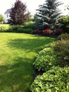 Award Winning Lawn Care Experts In Lancaster Pa Share Some Of The Reasons Do It Yourself Diy Programs Fall Short Compared To Professional