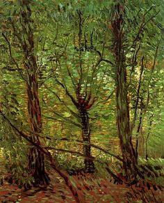 Van Gogh, Trees and Undergrowth