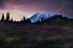 Mt Rainier National Park at Night