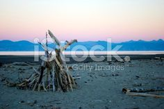 Dusk on Motueka Spit, Tasman, New Zealand royalty-free stock photo Beach Photos, Image Now, Driftwood, Dusk, New Zealand, Royalty Free Stock Photos, Beach Photography, Beach Pics, Drift Wood