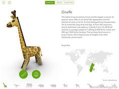 Foldify Zoo Papercraft App - Tiere Bastelvorlagen (24)