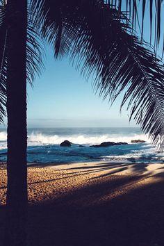 All things that make beachfronts beautiful!