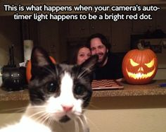 Family photo gets interrupted…