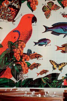 interior, animals, animal illustrations, fish, coffee