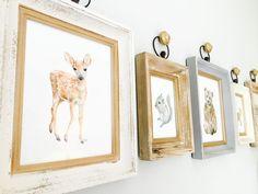 Project Nursery - Woodland Prints