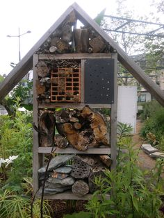 HLM à Insectes