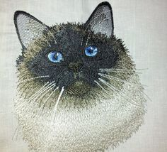 Himalayan Cat embroidery design. Design for by Polskyembroidery