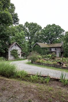 Photo Credit: Hollis Bennett. Two of the six houses on Architect Braxton Dixon's hillside property in TN.
