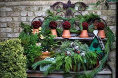 A Southern Style Christmas in my Garden.. | The Graceful Gardener