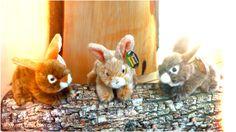 Kleine Kaninchen aus Plüsch