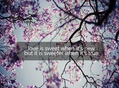 love is sweet when it's new but it is sweeter when it's true - WORDS - quotes
