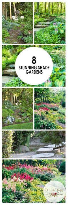 Shade Gardens, How to Grow a Shade Garden, Shade Garden Ideas, Landscaping Ideas, Backyard Landscaping, Backyard Landscaping Ideas, Backyard Gardening TIps and Tricks, Popular #Garden/Landscaping