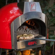 Home pizza oven - really want one!