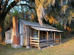 """Old Florida Cabin"" by Randi Kuhne, Homosassa // Rustic old cabin in Citrus County, Florida Old Florida, Vintage Florida, Florida Trees, Old Cabins, Cabins And Cottages, Beach Cottages, Small Cabins, Cabin Homes, Log Homes"