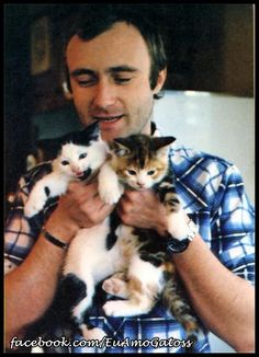 Phil and his kittens...