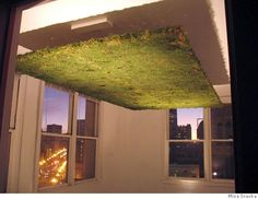 "Misa Inaoka's piece, ""Moss Ceiling"""