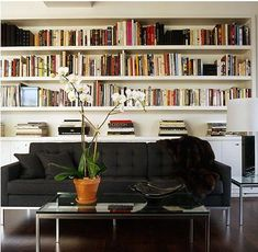 bookshelves -might look good on the the basement's back wall