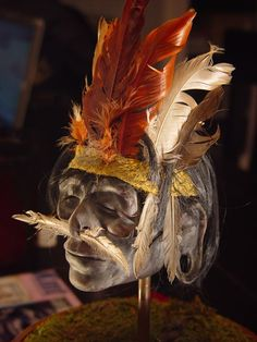 Mummified Pigmy Warrior Head... Years looking to have one