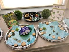 The kids are loving our new pond centre! Lifecycle toys purchased at Michael's. Mini Beasts, Reggio, Ponds, In Kindergarten, Oceans, Rivers, Lakes, Classroom Ideas, Centre