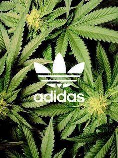 Adidas plants